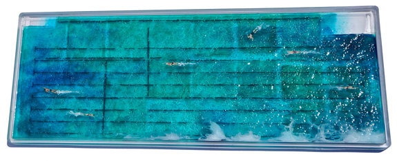 Freshwater, 2020. Pigment, paint and resin on Perspex. 72 x 27cm.
